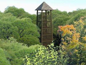 Monterfeld uitkijktoren