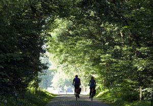 Wandelen en fietsen in montferland