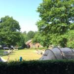 Berkenhof veld