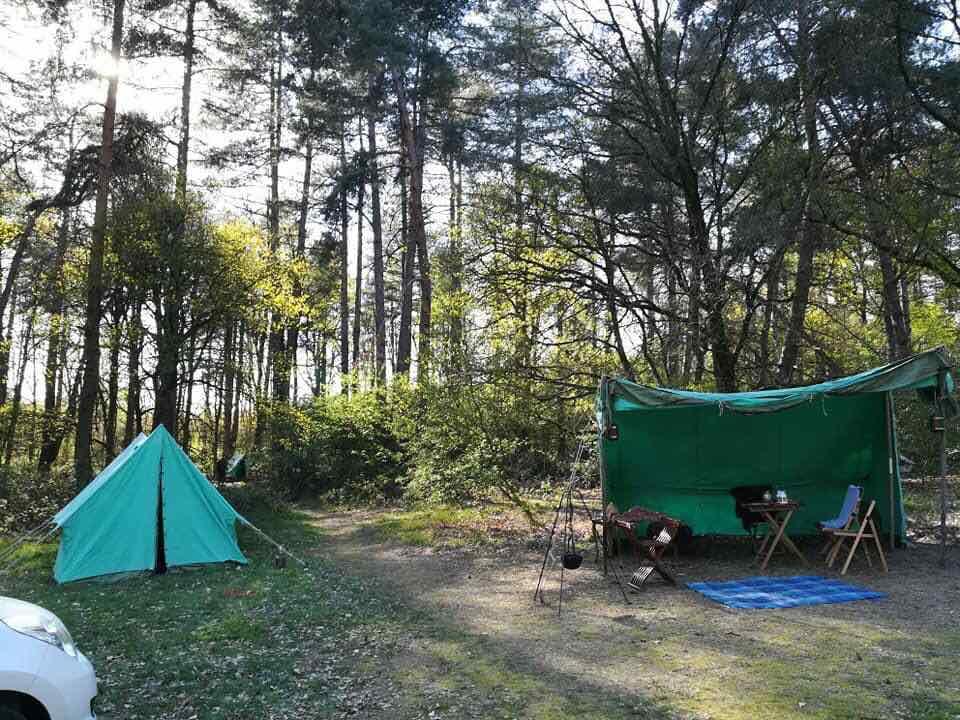 groepsplaatsen camping gelderland