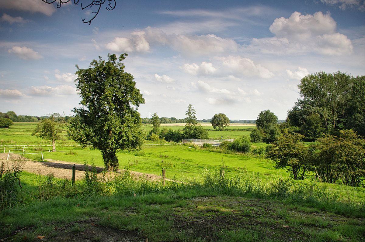 omgeving brockhausen montferland